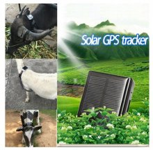 V26 New Solar pets gps tracker V26 Never Power OFF Waterproof Animal Pet And dog device